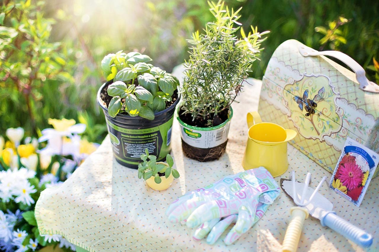 Outil de Jardinage